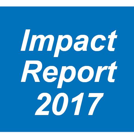 Impact Report icon_2017