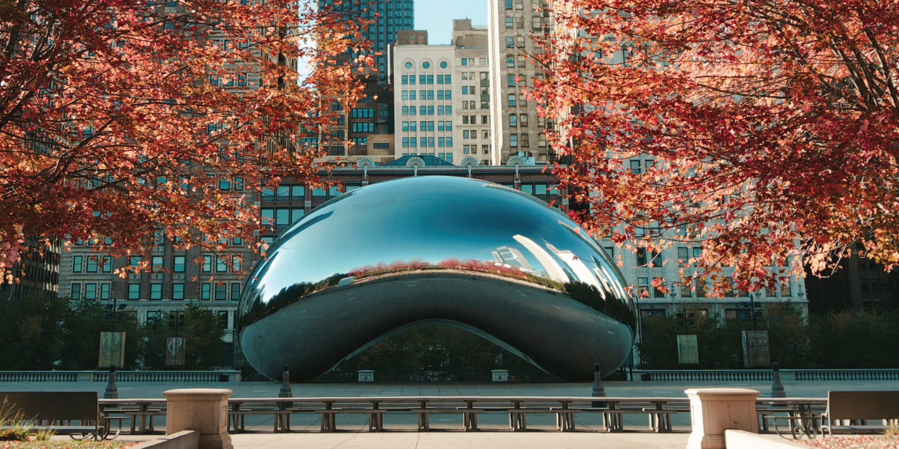 2019 Impact Report-Cover Photo-Chicago Bean